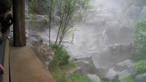 Central Park Zoo landscape