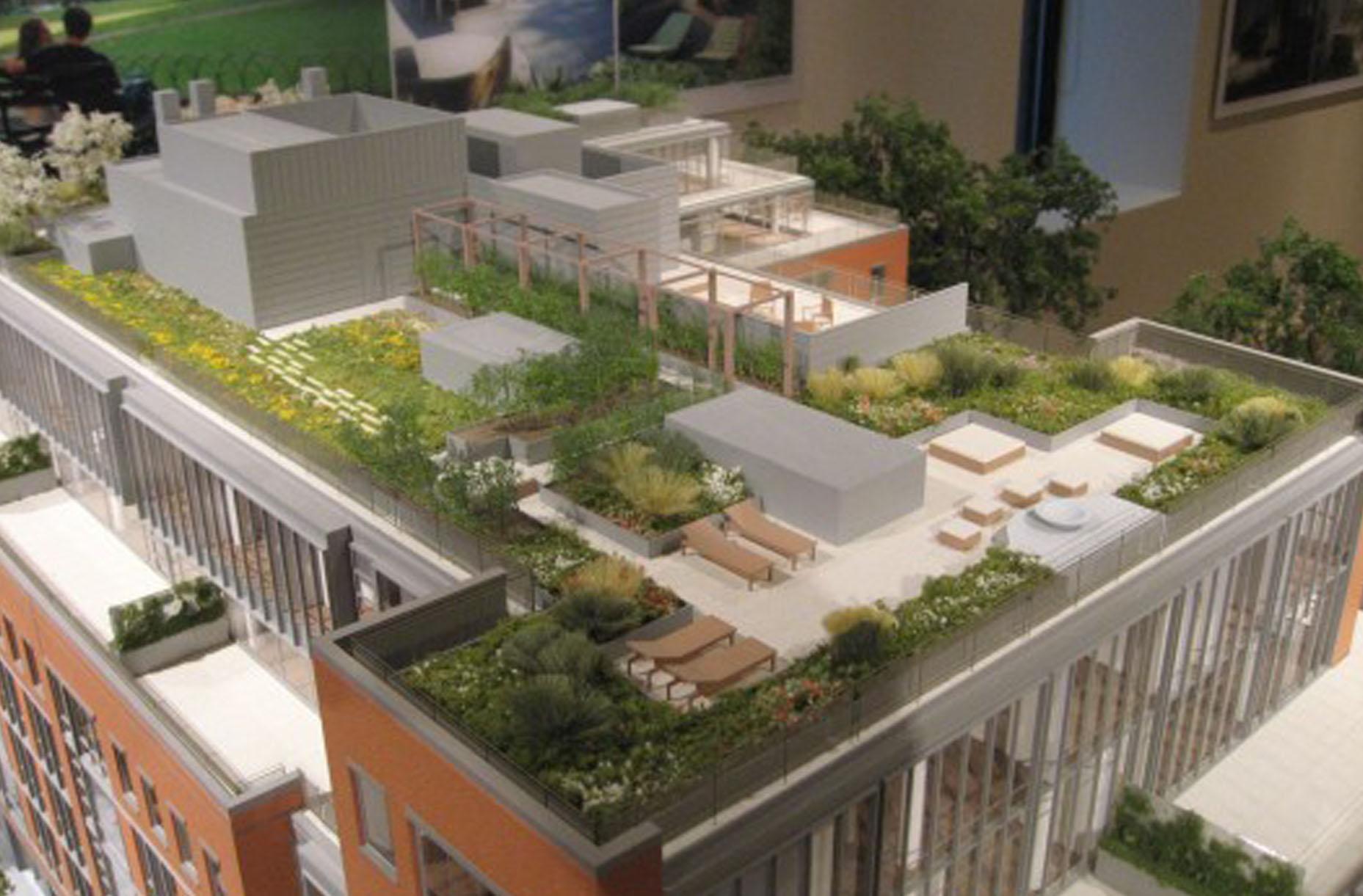 Chelsea Enclave roof landscape architecture