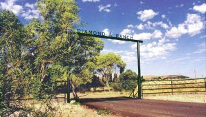 DIAMOND RANCH-entry gate_edit