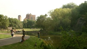 Morningside Park_01