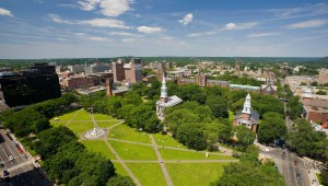 New Haven Green landscape architecture