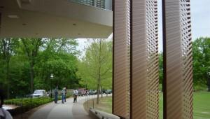 Princeton College landscape architectur