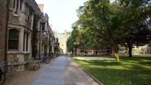 Princeton landscape architectur