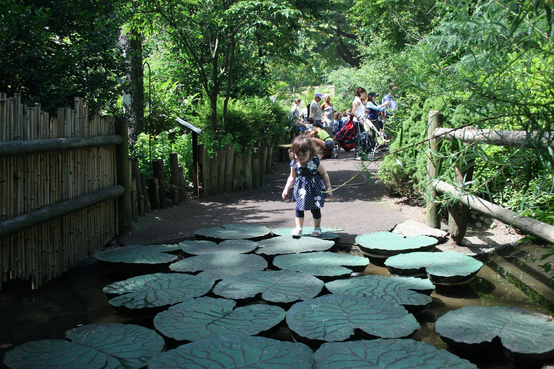 Central Park zoo landscape architecture