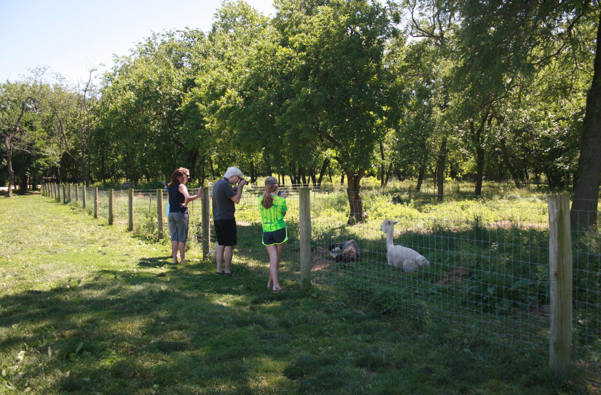 Queens Farm_08