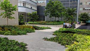 tisch courtyard image_crop
