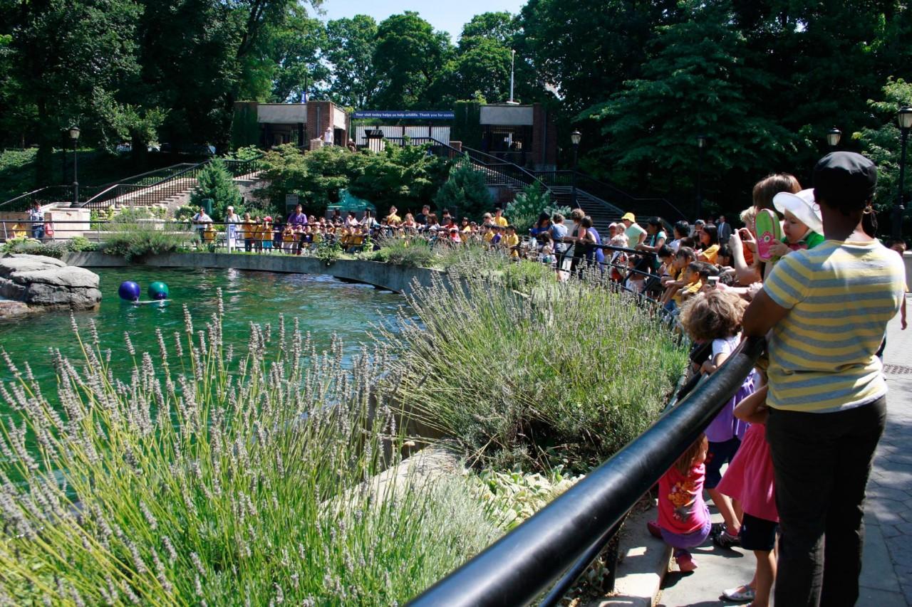 Prospect Park Zoo_03